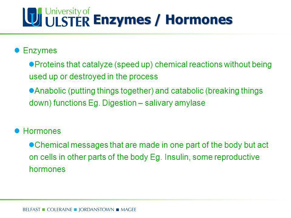 Enzymes / Hormones Enzymes