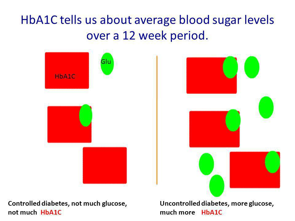 HbA1C tells us about average blood sugar levels over a 12 week period.