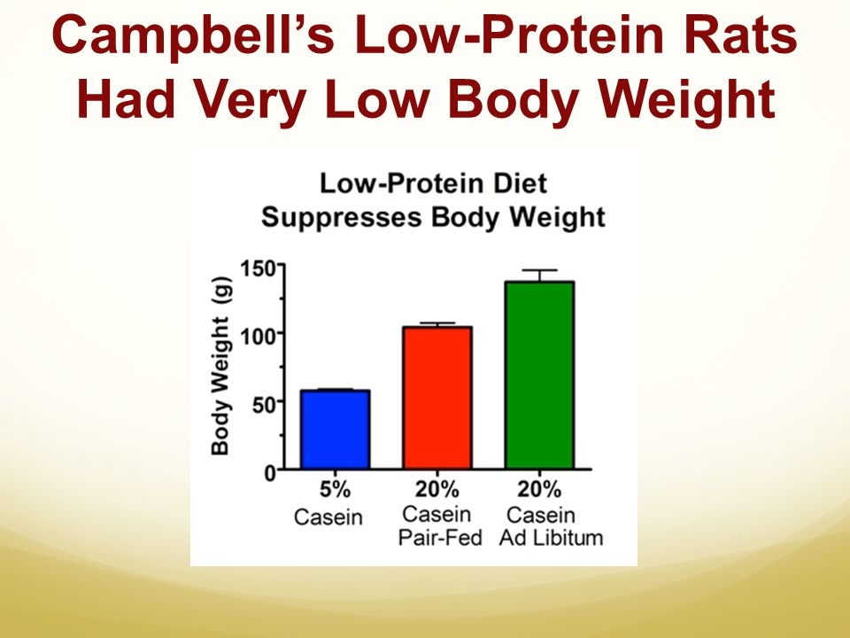 Campbell's Low-Protein Rats Had Very Low Body Weight
