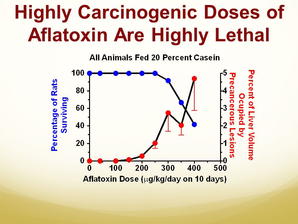 Highly Carcinogenic Doses of Aflatoxin Are Highly Lethal
