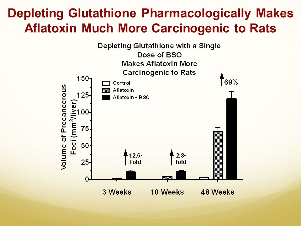 Depleting Glutathione Pharmacologically Makes Aflatoxin Much More Carcinogenic to Rats