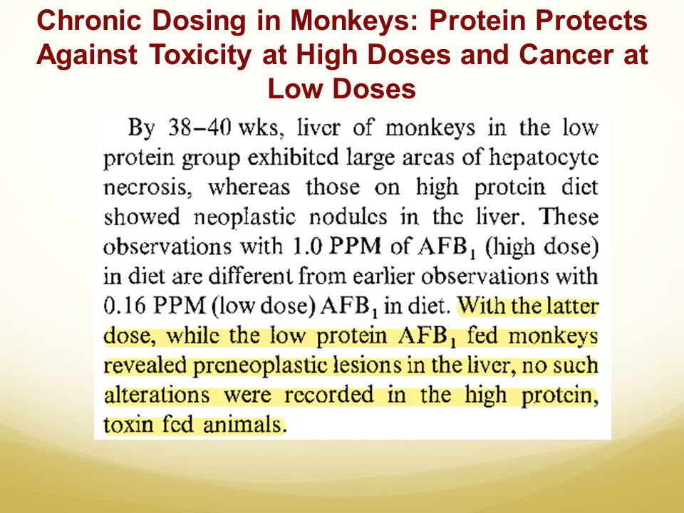 Chronic Dosing in Monkeys: Protein Protects Against Toxicity at High Doses and Cancer at Low Doses