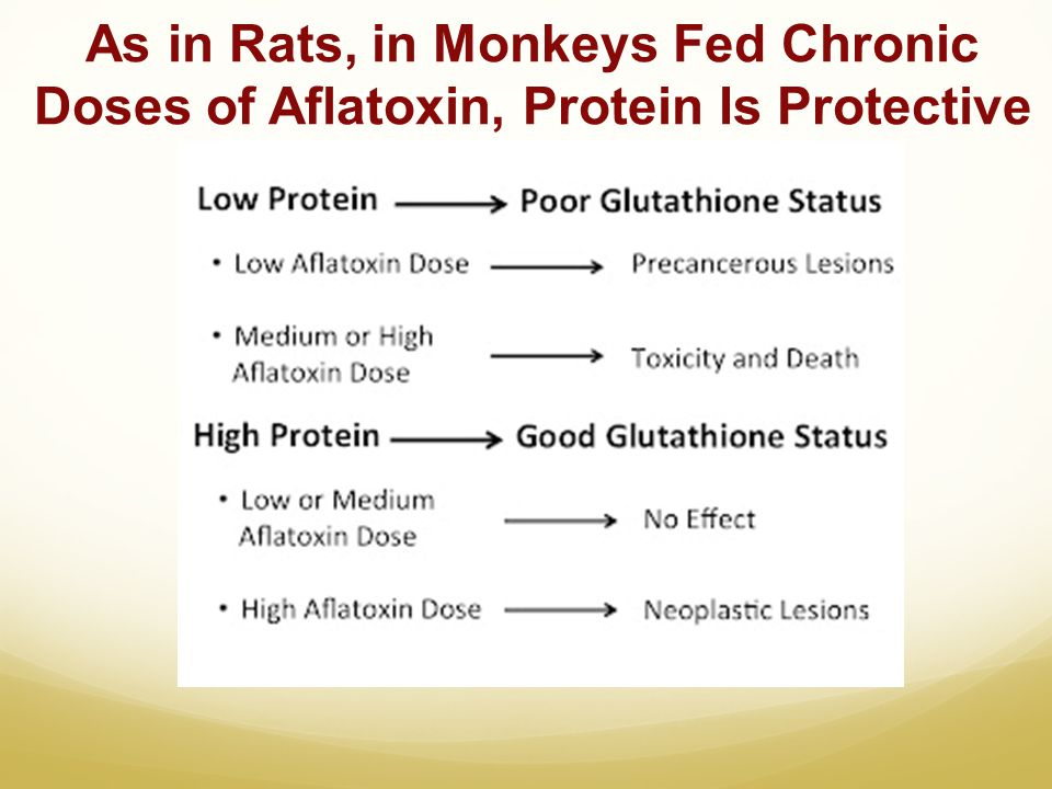 As in Rats, in Monkeys Fed Chronic Doses of Aflatoxin, Protein Is Protective