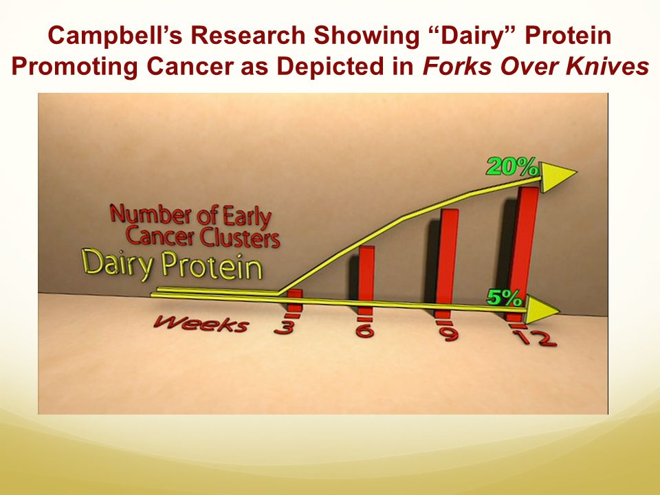 Campbell's Research Showing Dairy Protein Promoting Cancer as Depicted in Forks Over Knives