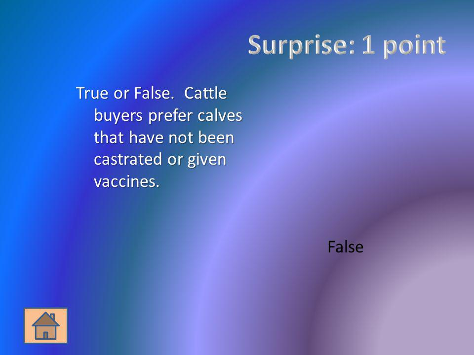 Surprise: 1 point True or False. Cattle buyers prefer calves that have not been castrated or given vaccines.