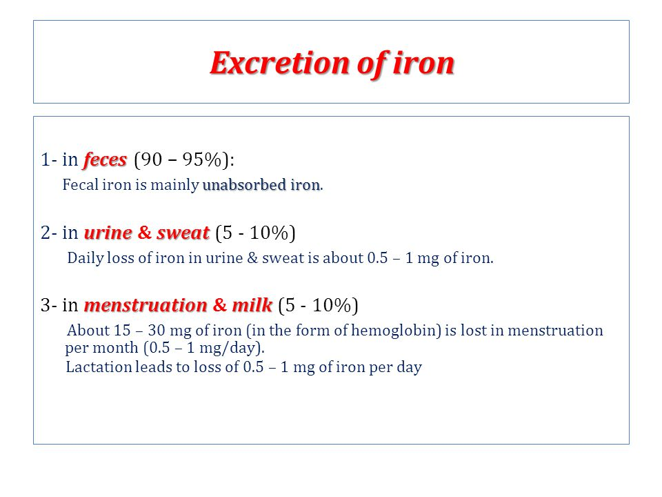 Excretion of iron 1- in feces (90 – 95%):