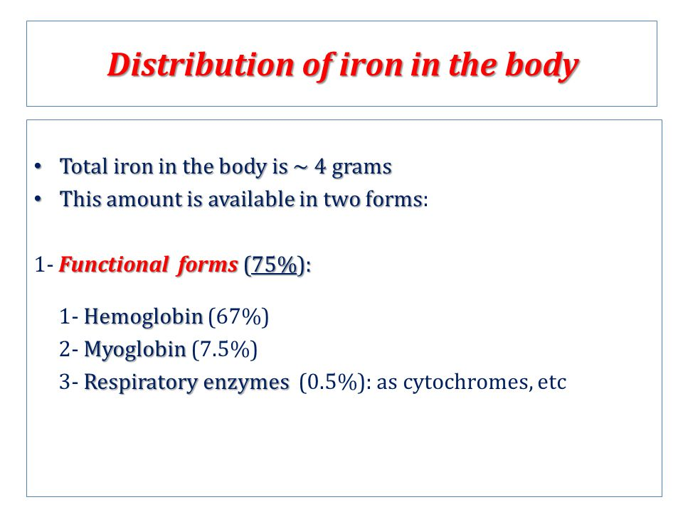 Distribution of iron in the body
