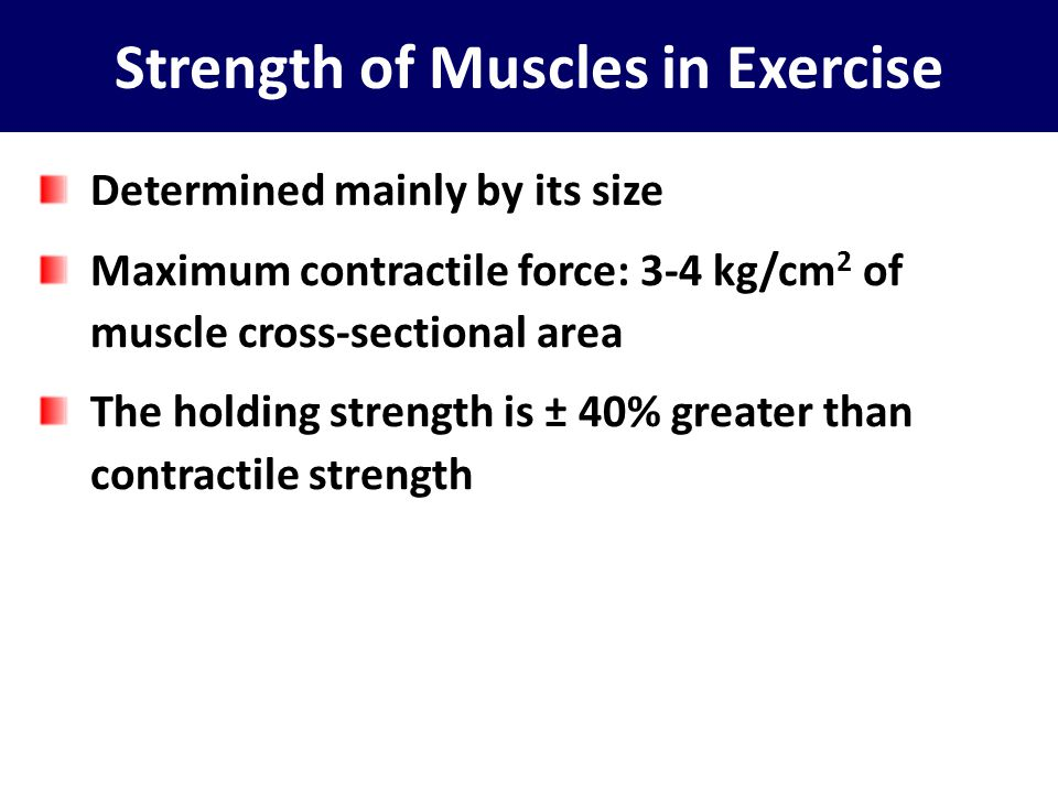 Strength of Muscles in Exercise