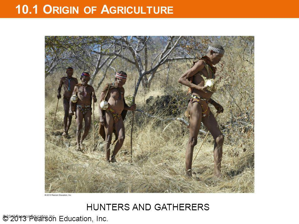 10.1 Origin of Agriculture HUNTERS AND GATHERERS