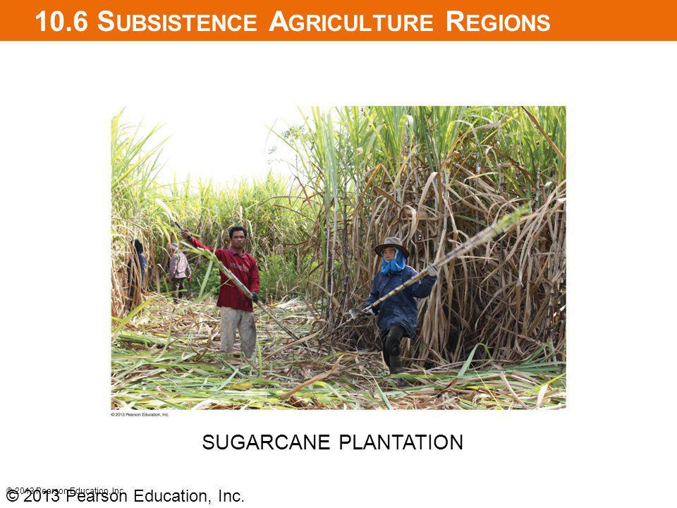10.6 Subsistence Agriculture Regions