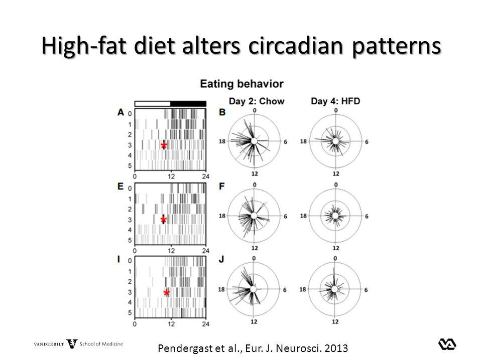 High-fat diet alters circadian patterns