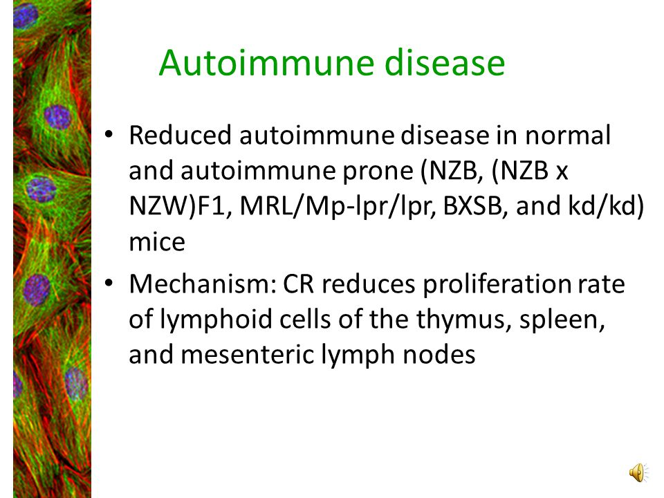 Autoimmune disease Reduced autoimmune disease in normal and autoimmune prone (NZB, (NZB x NZW)F1, MRL/Mp-lpr/lpr, BXSB, and kd/kd) mice.