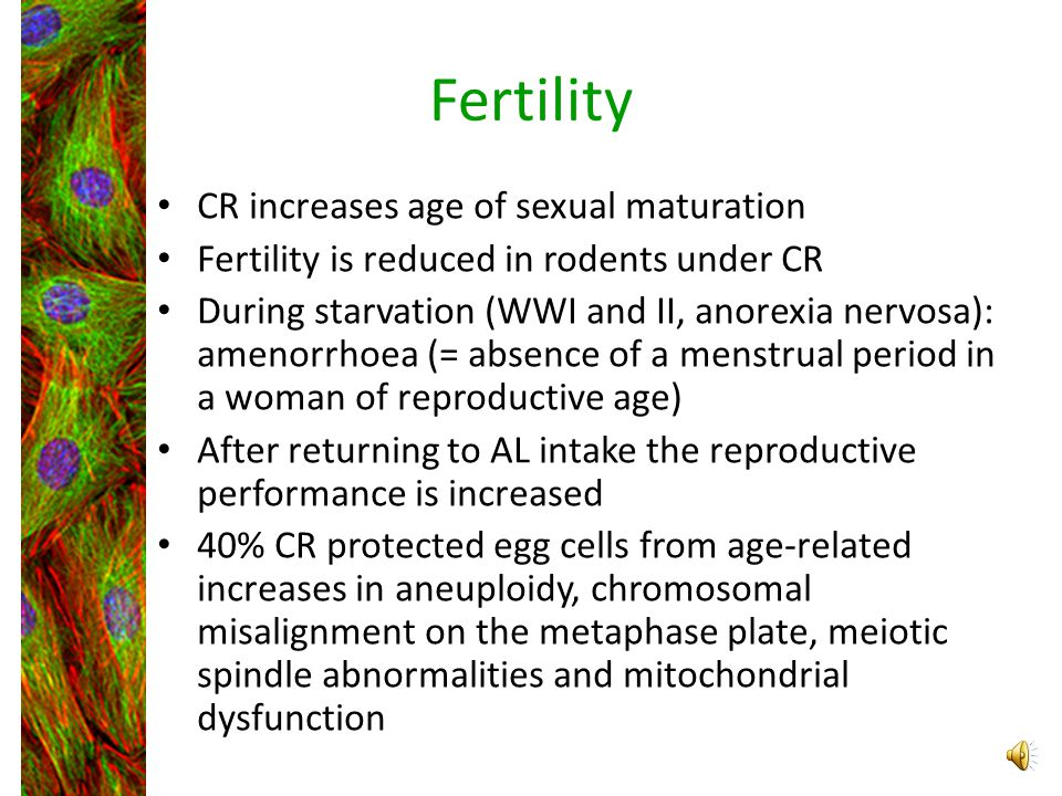Fertility CR increases age of sexual maturation