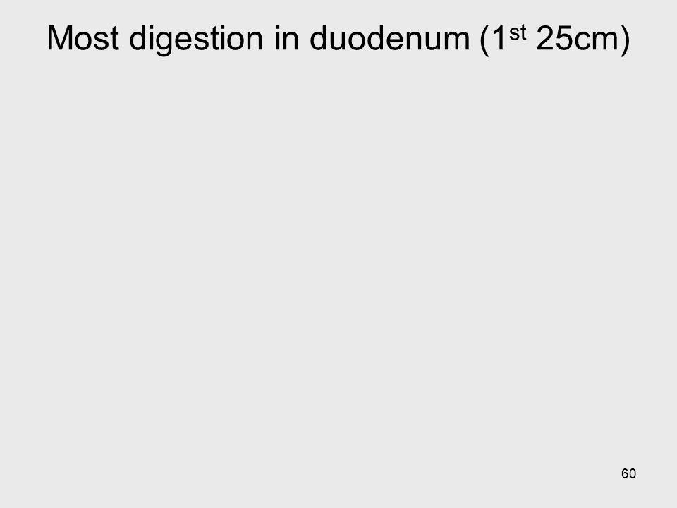 Most digestion in duodenum (1st 25cm)