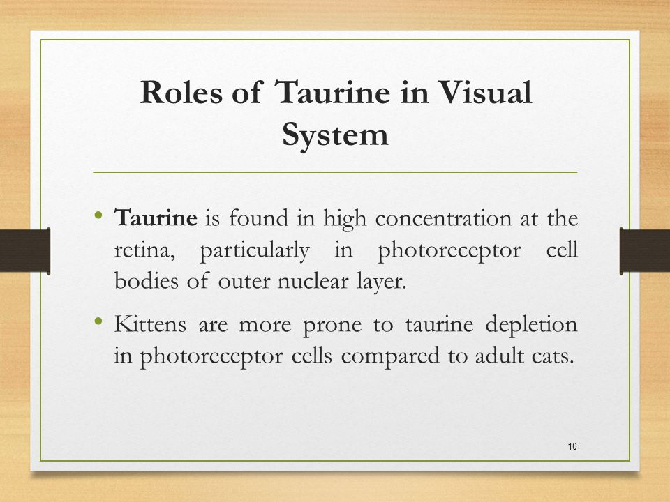 Roles of Taurine in Visual System