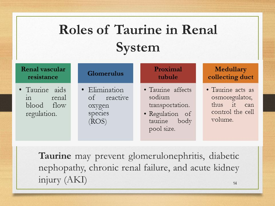 Roles of Taurine in Renal System