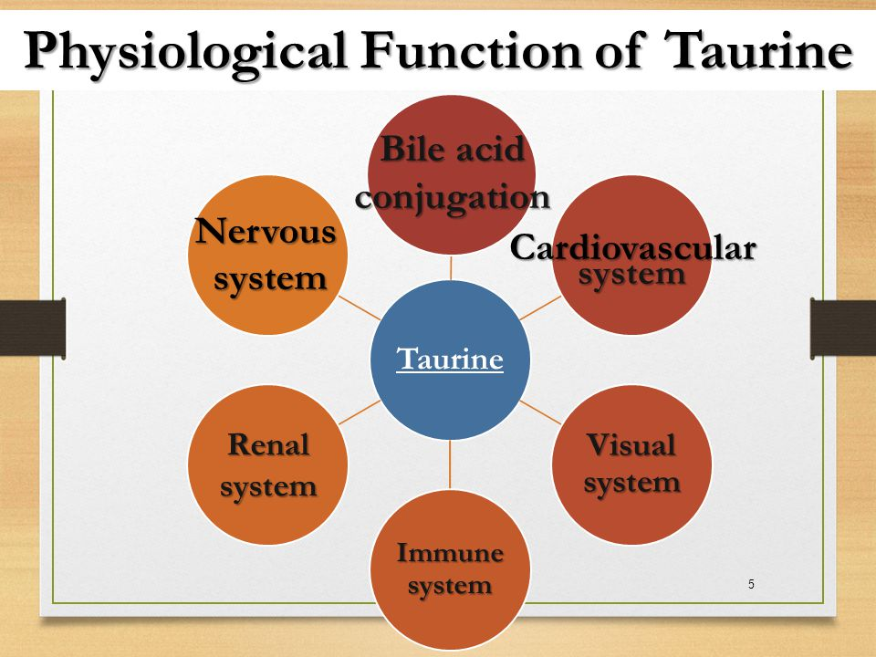 Physiological Function of Taurine