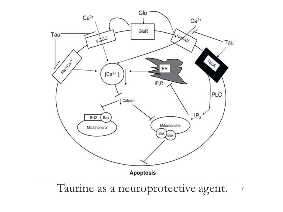 Taurine as a neuroprotective agent.
