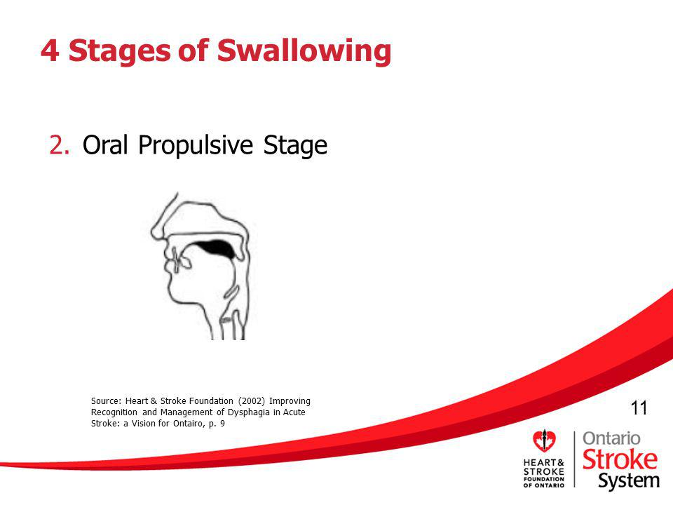4 Stages of Swallowing Oral Propulsive Stage