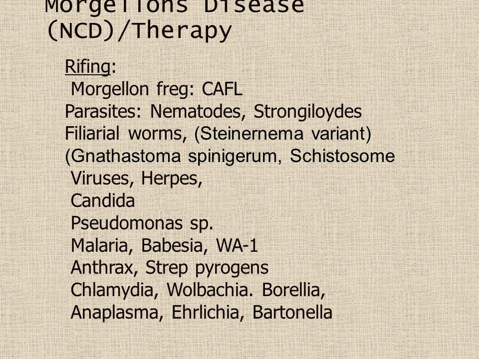 Morgellons Disease (NCD)/Therapy