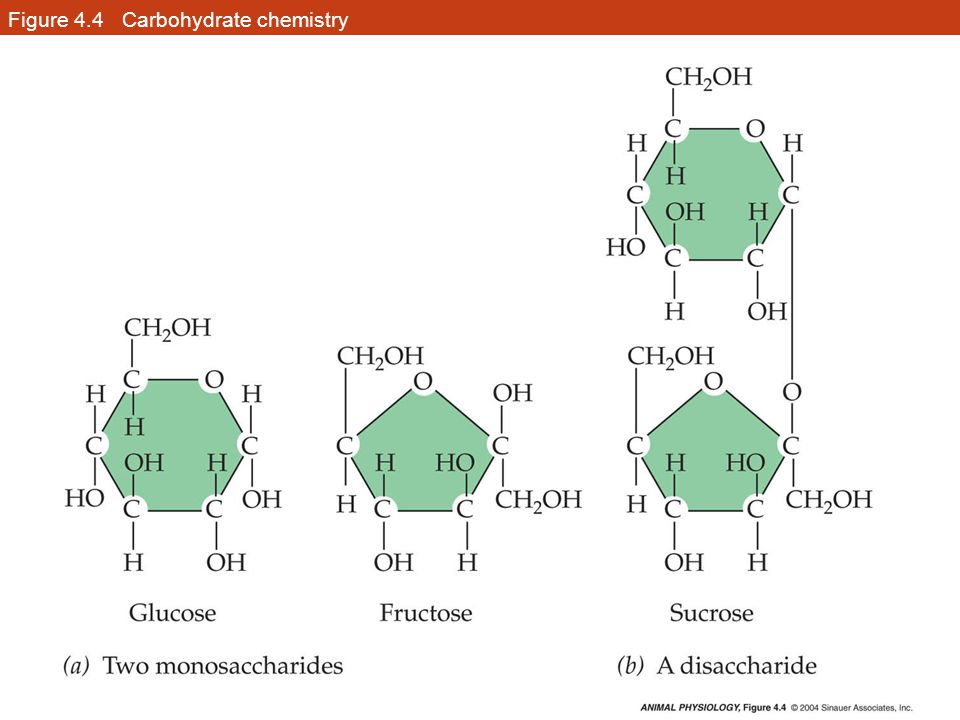 Figure 4.4 Carbohydrate chemistry
