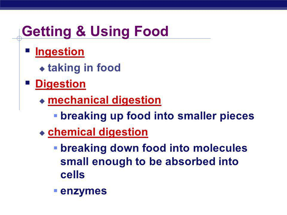 Getting & Using Food Ingestion taking in food Digestion