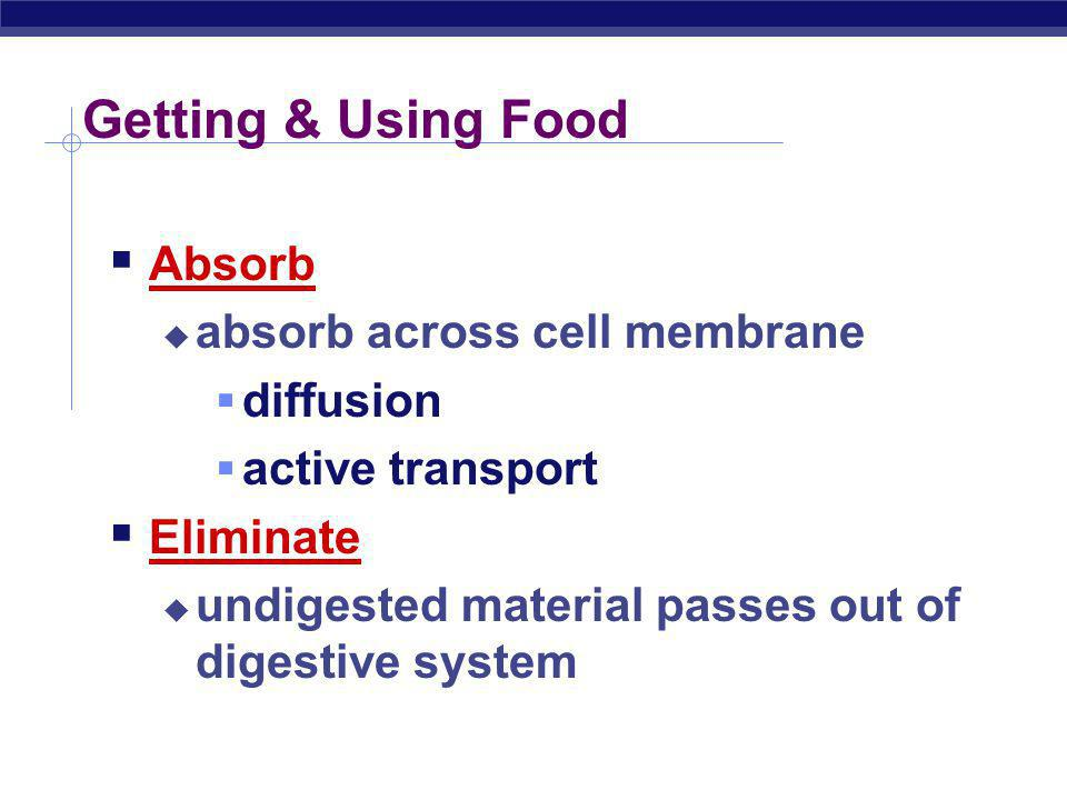 Getting & Using Food Absorb absorb across cell membrane diffusion