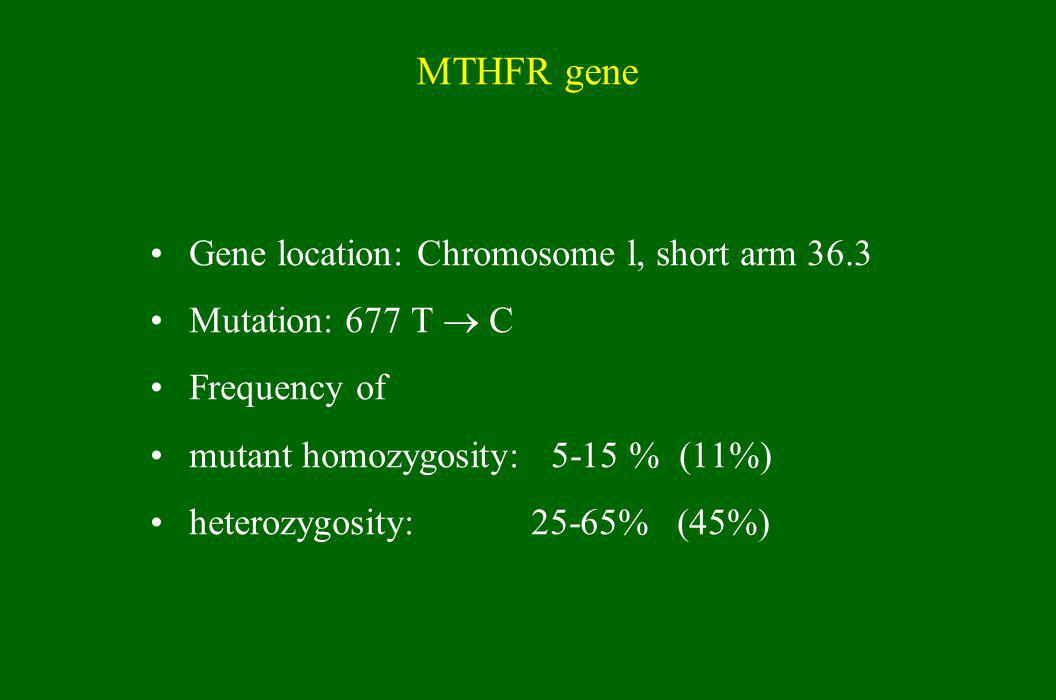 MTHFR gene Gene location: Chromosome l, short arm 36.3