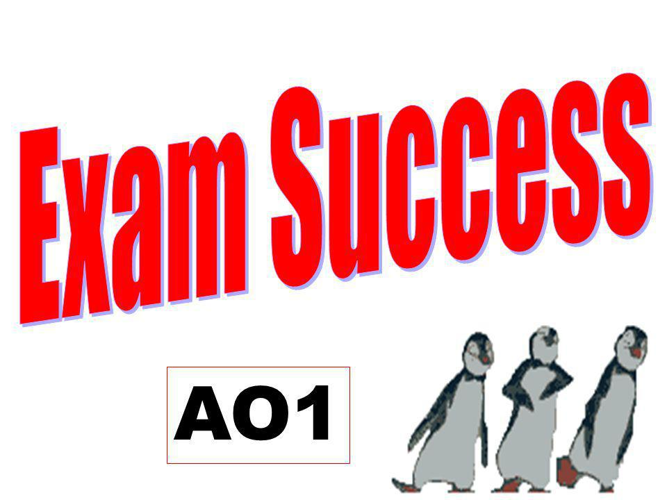 Exam Success AO1