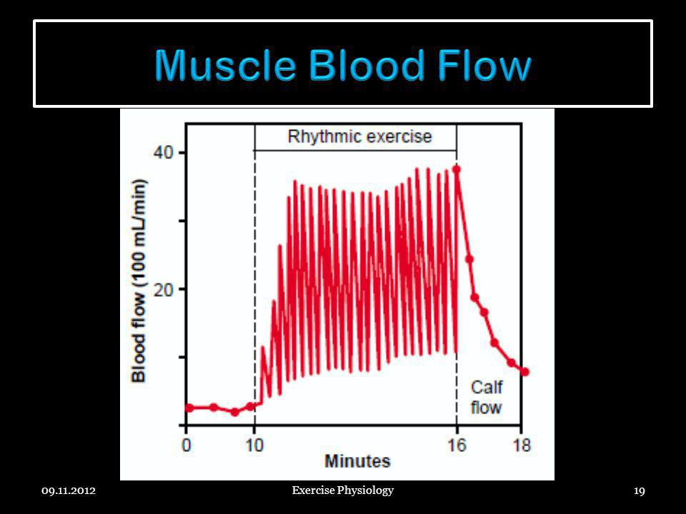 Muscle Blood Flow 09.11.2012 Exercise Physiology