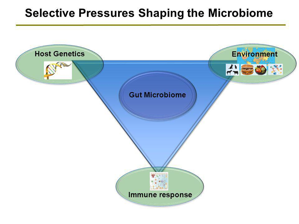 Selective Pressures Shaping the Microbiome