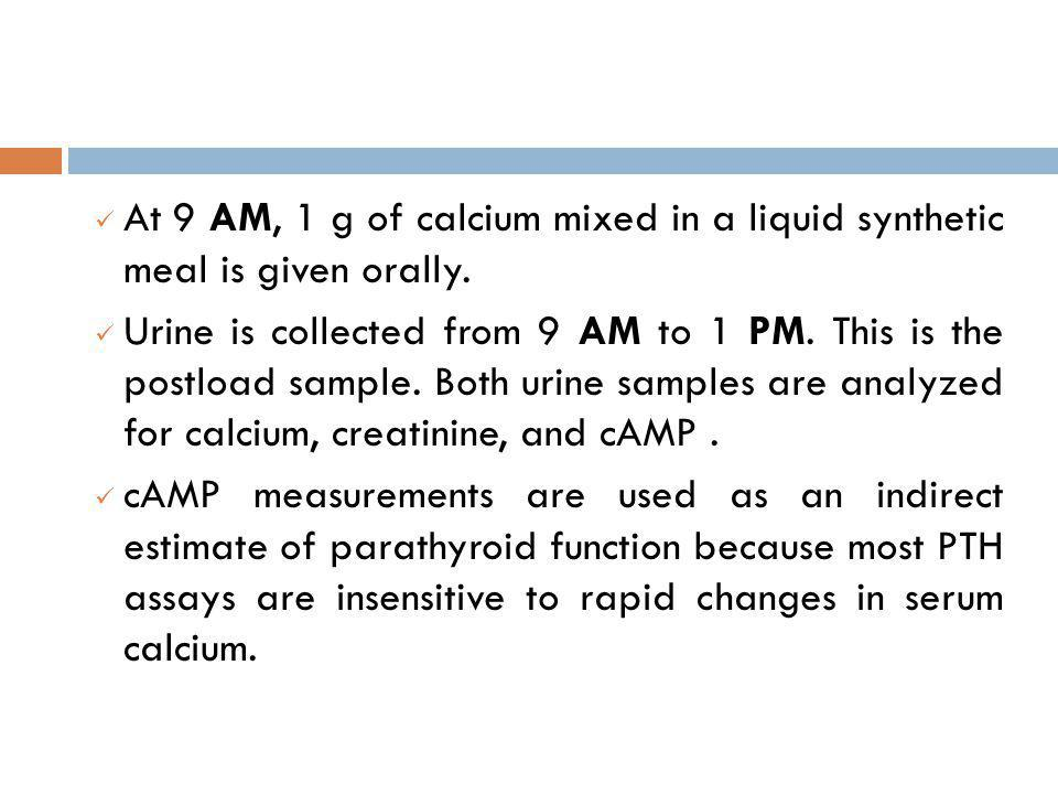 At 9 AM, 1 g of calcium mixed in a liquid synthetic meal is given orally.