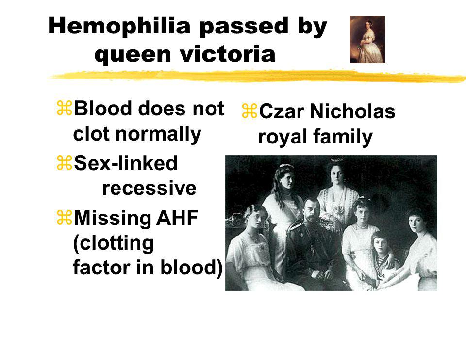 Hemophilia passed by queen victoria