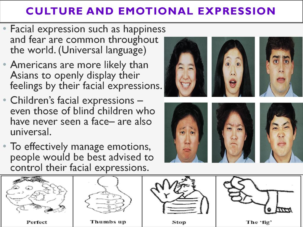 Different cultures and facial expressions hop video model