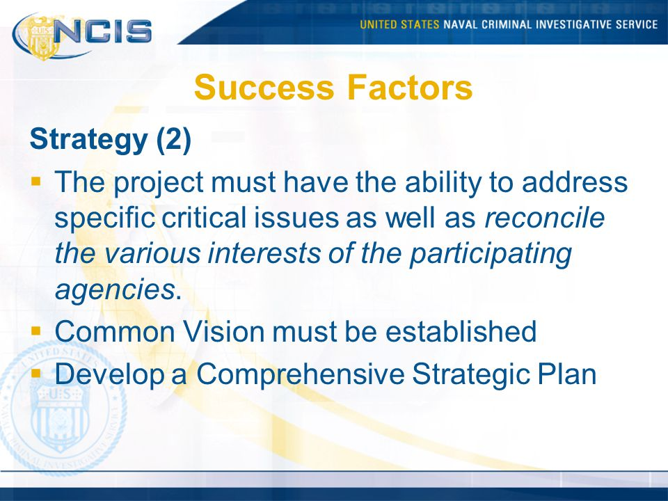 Success Factors Strategy (2)