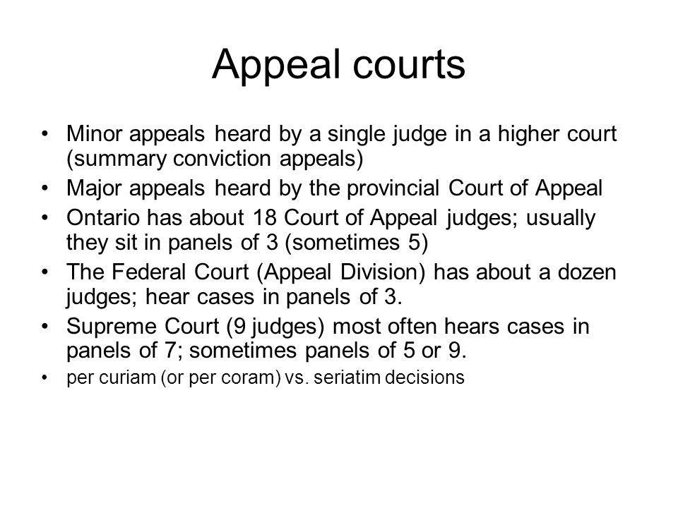 Appeal courts Minor appeals heard by a single judge in a higher court (summary conviction appeals)