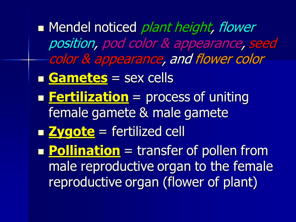 Mendel noticed plant height, flower position, pod color & appearance, seed color & appearance, and flower color