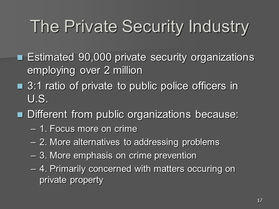 The Private Security Industry