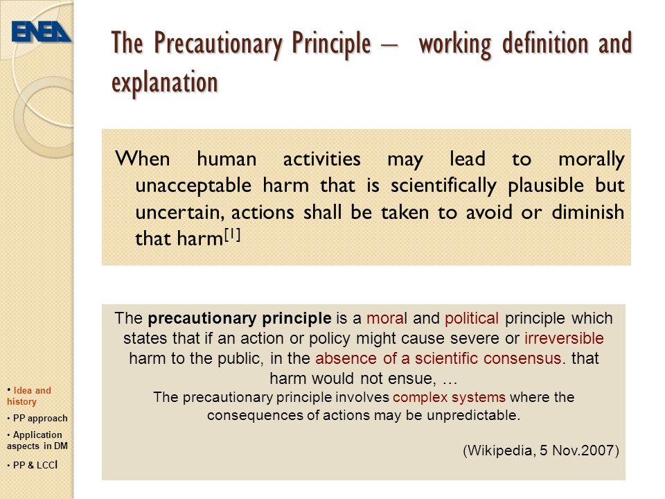 The Precautionary Principle – working definition and explanation