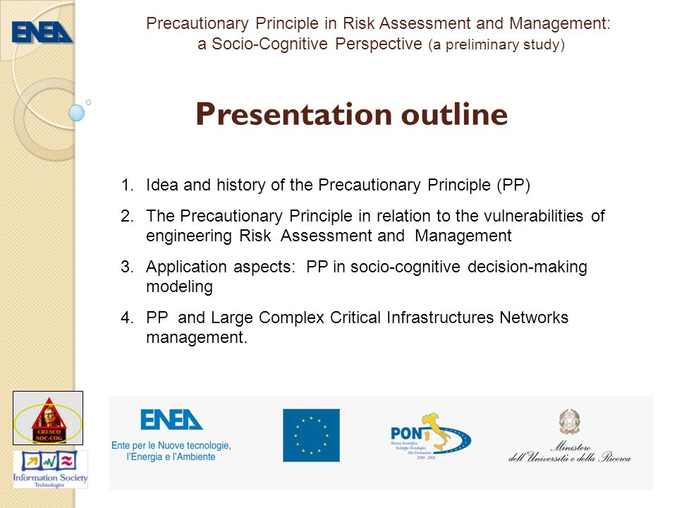 Precautionary Principle in Risk Assessment and Management: a Socio-Cognitive Perspective (a preliminary study)