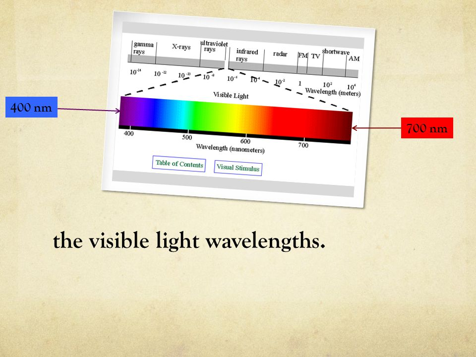 the visible light wavelengths.