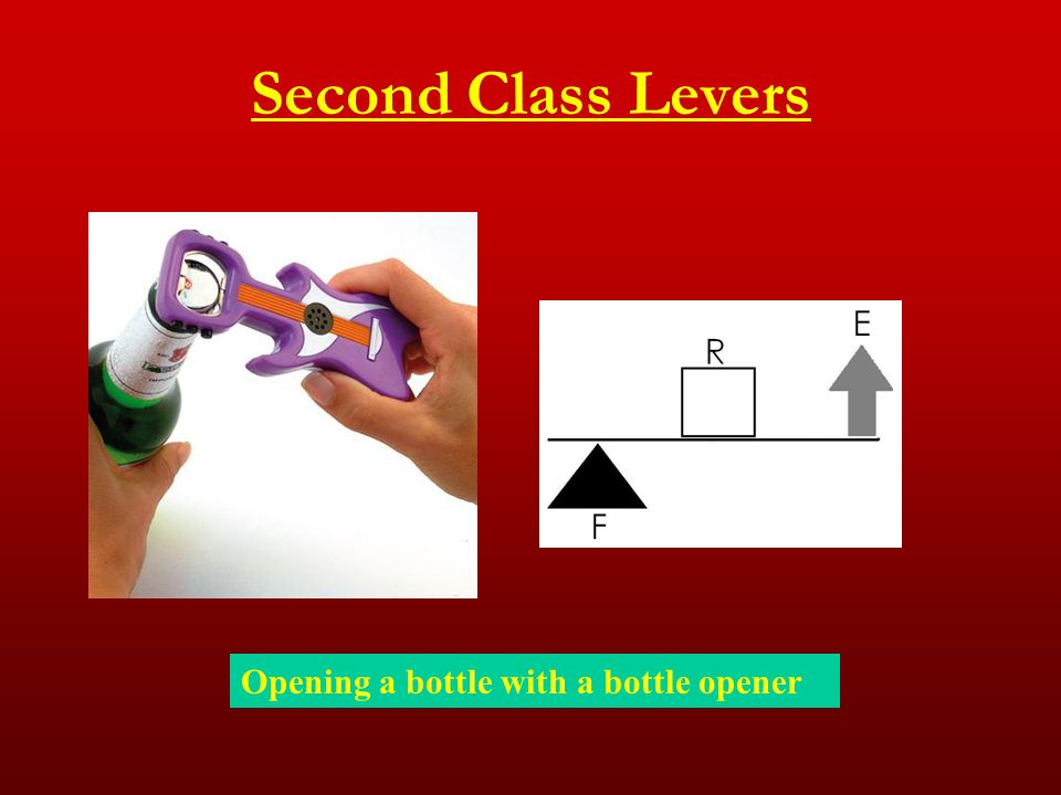 Second Class Levers Opening a bottle with a bottle opener