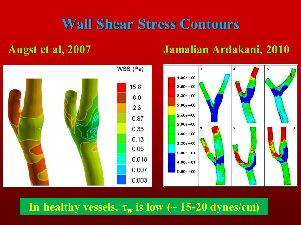 Wall Shear Stress Contours