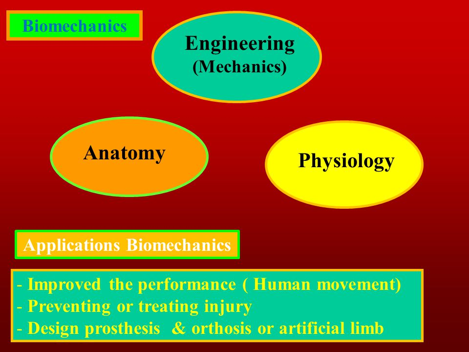 Applications Biomechanics