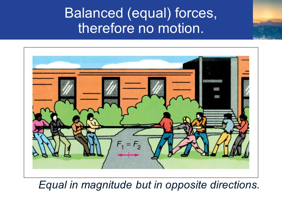 Balanced (equal) forces, therefore no motion.