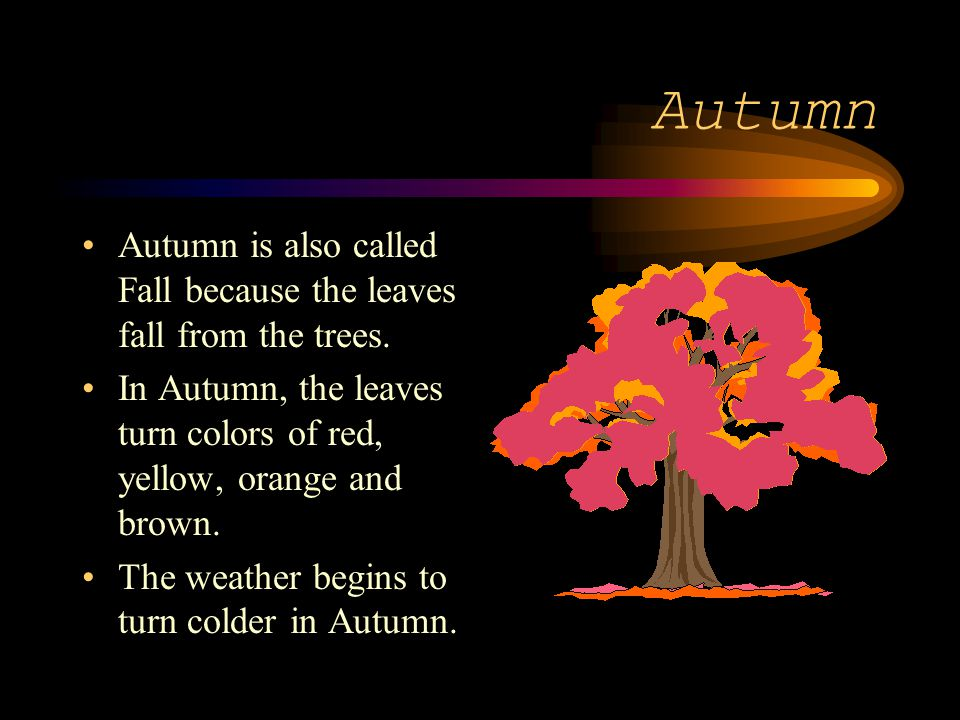 Autumn Autumn is also called Fall because the leaves fall from the trees. In Autumn, the leaves turn colors of red, yellow, orange and brown.