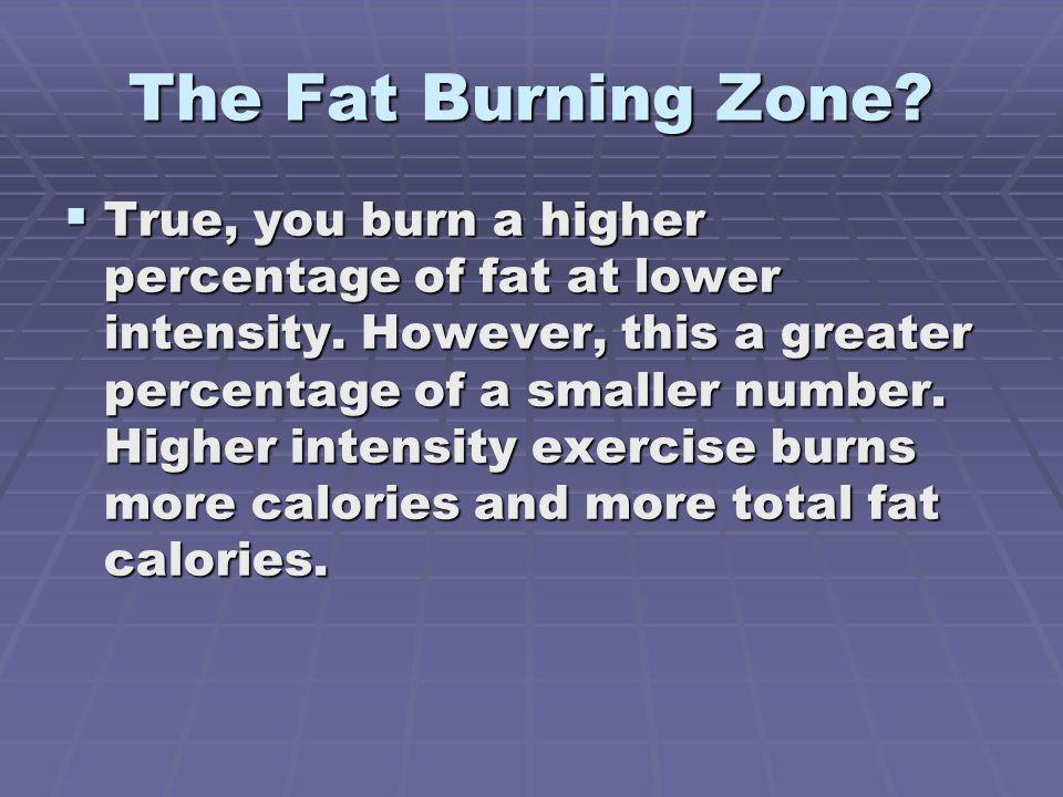 The Fat Burning Zone