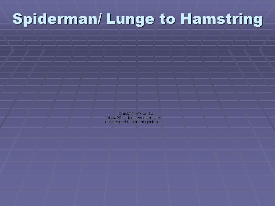 Spiderman/ Lunge to Hamstring