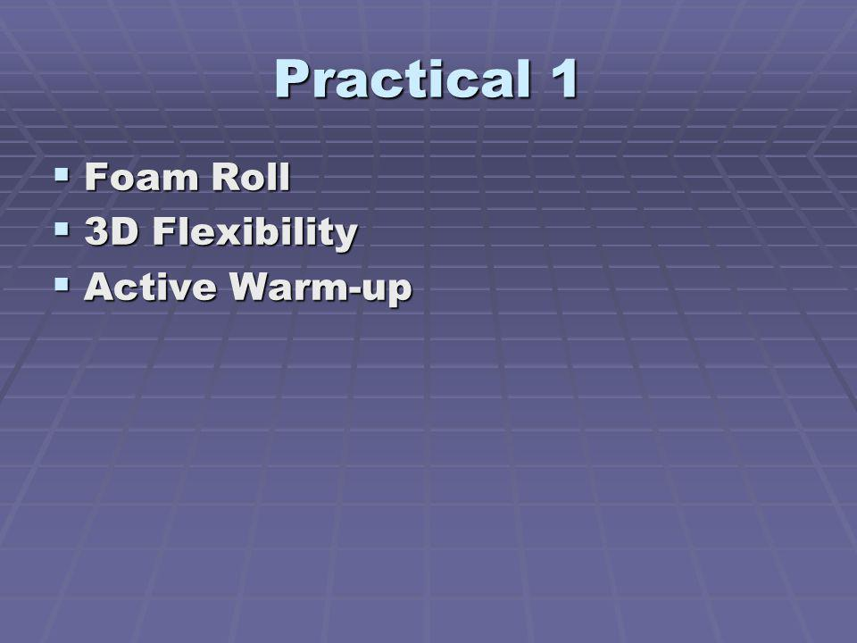 Practical 1 Foam Roll 3D Flexibility Active Warm-up