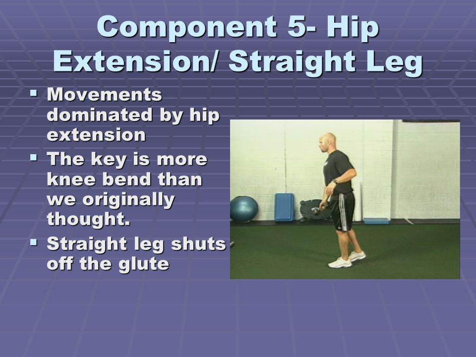 Component 5- Hip Extension/ Straight Leg